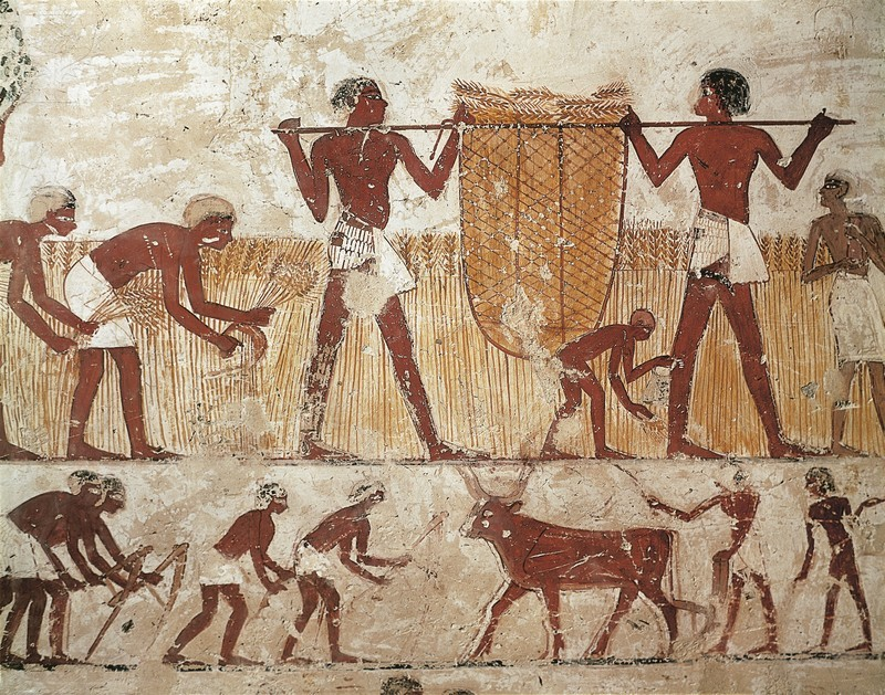 Physical Geographic Characterictics of Ancient Egypt